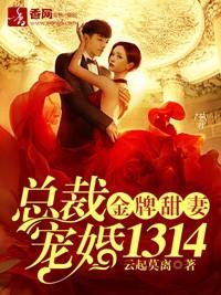 金牌甜妻,總裁寵婚1314